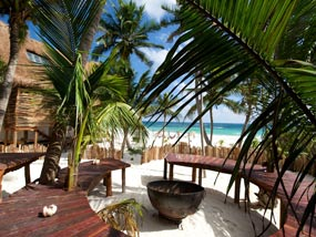 The best way to book is to swing by the hotel upon your arrival in Tulum.